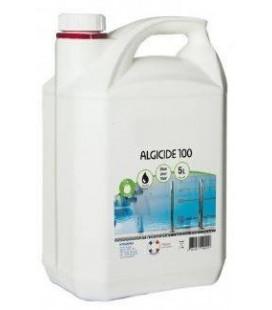 anti algues piscine Algicide 100