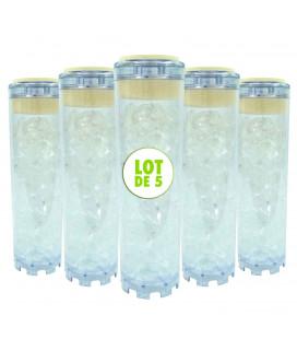 """Lot de 5 cartouches polyphosphate - 9""""3/4"""